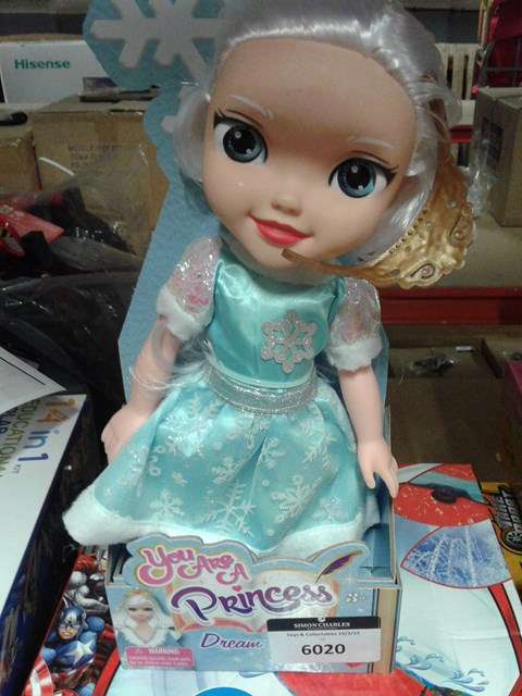 Lot 6020 YOU ARE A PRINCESS DREAM DOLL