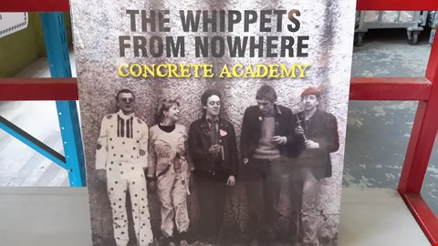 Lot 9085 LOT OF 10 ASSORTED VINYL RECORDS  TO INCLUDE THE WHIPPETS FROM NOWHERE, PORCELAIN, LEVANTA POEIRA, PAPER DOLLHOUSE ETC