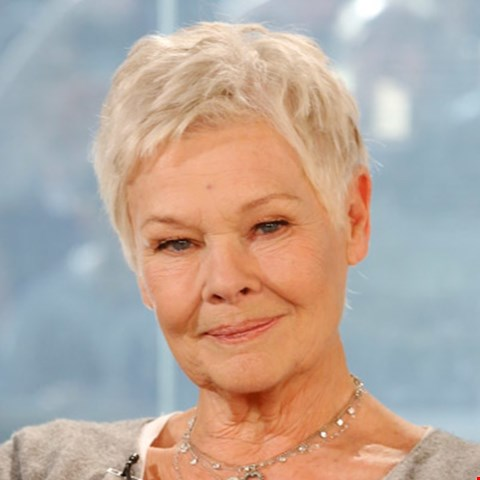 Lot 48 SHADES DONATED BY BRITISH ACTRESS DAME JUDI DENCH