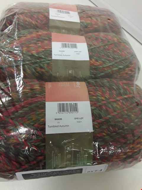 Lot 391 THREE LARGE BALLS OF HAYFIELD BONANZA TUMBLED AUTUMN WOOL 400g per ball