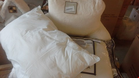 Lot 2113 A LOT OF 3 ITEMS TO INCLUDE BACK REST CUSHION AND 2 PILLOWS