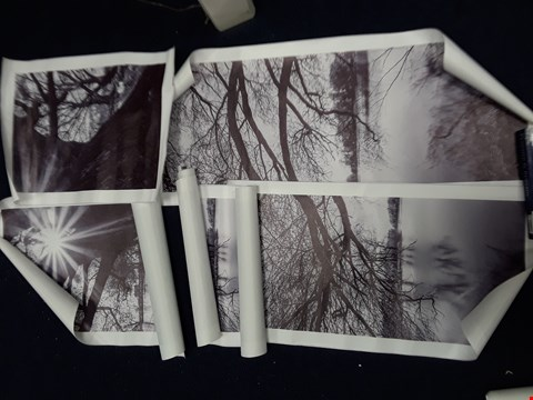 Lot 23 SET OF 5 BLACK/WHITE WOODLAND PHOTOGRAPHY PRINTS ON CANVAS