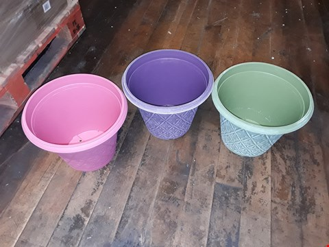 Lot 1731 LOT 2 GRADE 1 PACKS OF PASTEL 12 PRISMA PLANTERS RRP £30