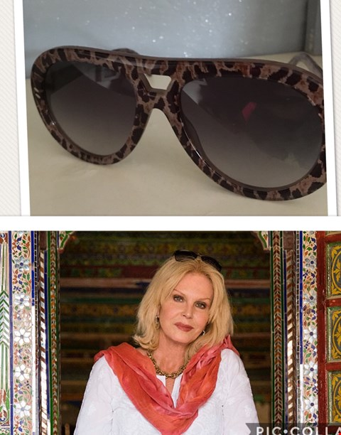 Lot 7 SHADES DONATED BY BRITISH ACTRESS JOANNA LUMLEY