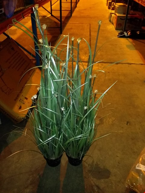 Lot 6176 LOT OF 2 LED ORNAMENTAL GRASS WITH POT