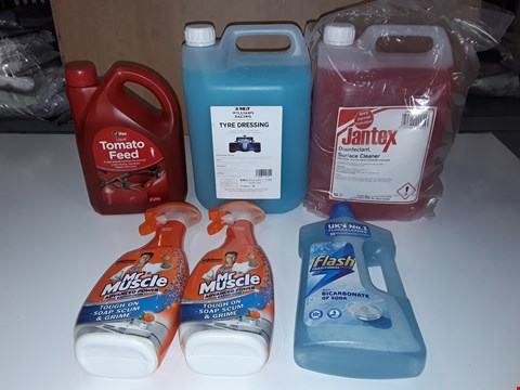 Lot 198 LOT OF 6 ASSORTED LIQUID HOMEWARE ITEMS TO INCLUDE TOMATO FEED, MR MUSCLE, FLASH FLOOR CLEANER