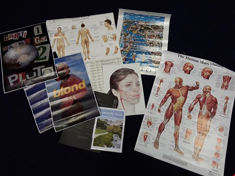 Lot 37 APPROXIMATELY 9 ASSORTED ARTWORKS, TO INCLUDE HUMAN MUSCULATURE POSTER