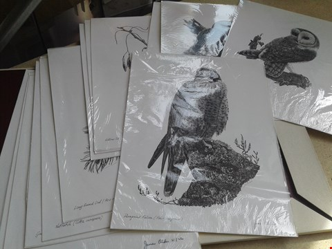 Lot 10 14 ASSORTED LIMTED EDITION JAMES ALDER BIRD PRINTS, SIGNED AND NUMBERED BY ARTIST, IN PRESENTATION FOLDER
